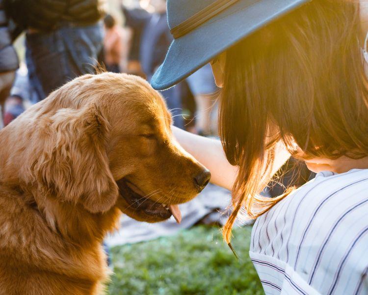 Heb je huisdieren en woon je samen Maak dan afspraken!